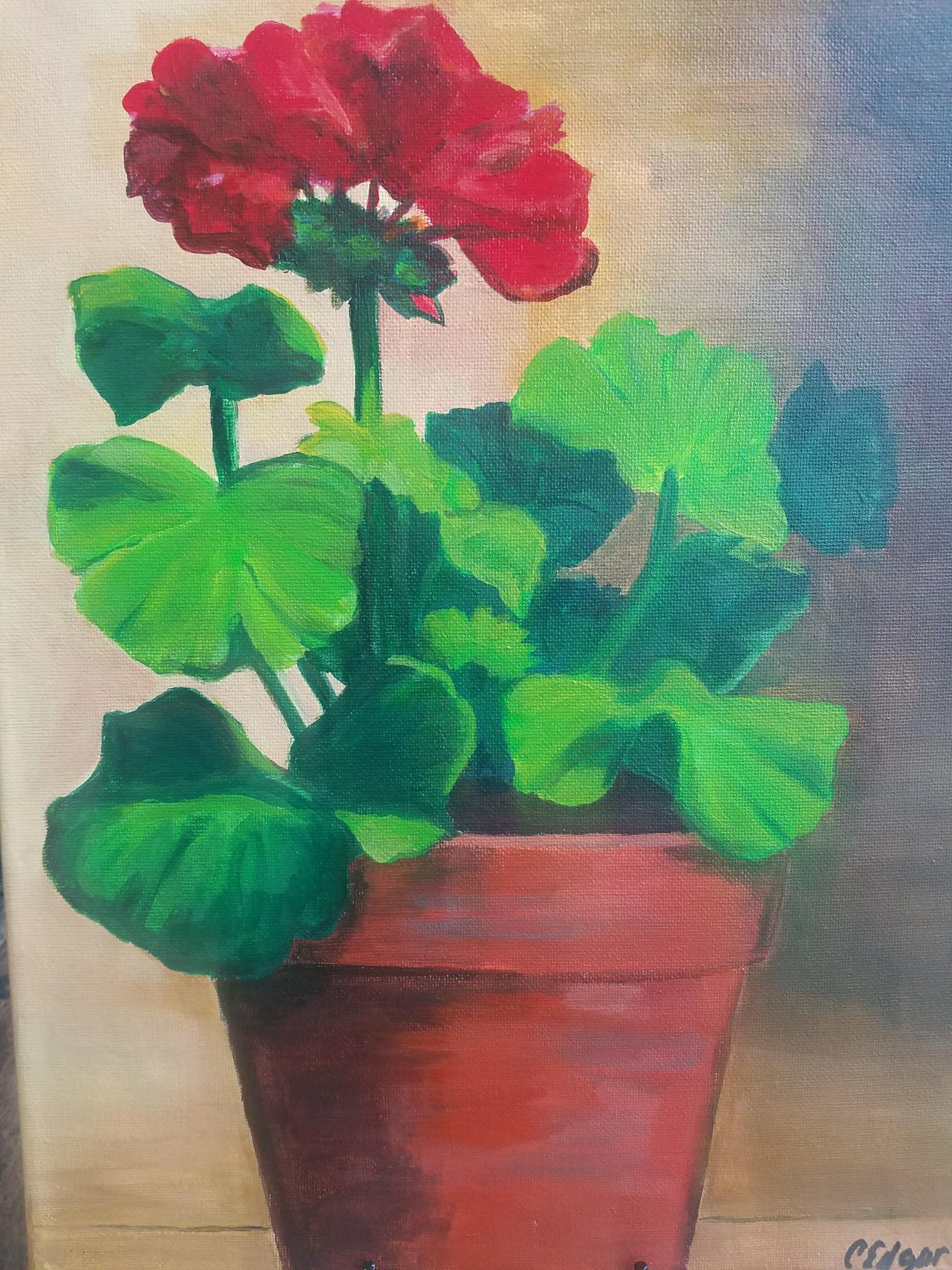 art class geranium